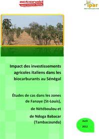 Microsoft Word - IPAR_Rapport final_invest_Italiens_biocarburant